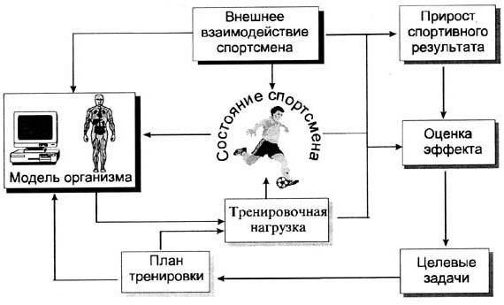 Создание планов и их корректировка связаны с прогнозированием поведения объектов управления и вместе входят в состав...