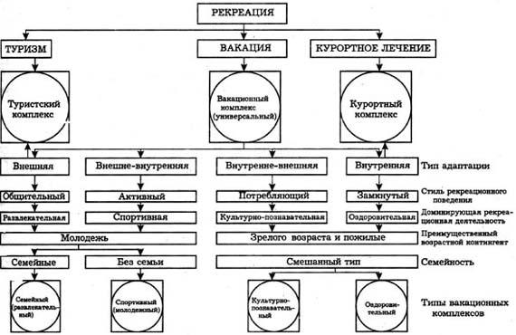 схему классификации видов