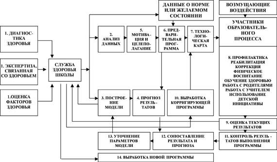 Структурно-функциональная схема управления оздоровительной работой в школе.