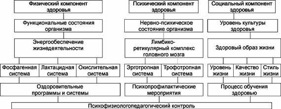 Блок-схема валеологического